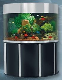 Aquarium Sales Acrylic Aquariums On Sale Aquarium